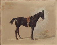 rebelle, portrait equestre by oliver pichat