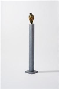 kestrel by jacqueline van der laan