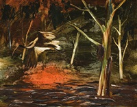 ibis in the bush by albert lee tucker
