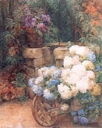 hortensias bleu by andhree ponsard