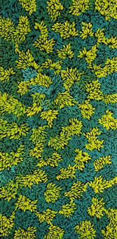 bush seed médicinal by margaret scobie