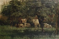 cattle in dappled sunlight by arthur douglas peppercorn