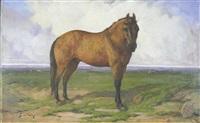 cavalo - redondo by simão frade da veiga