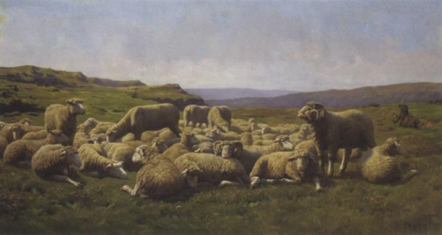 a flock of sheep by rené peyrol