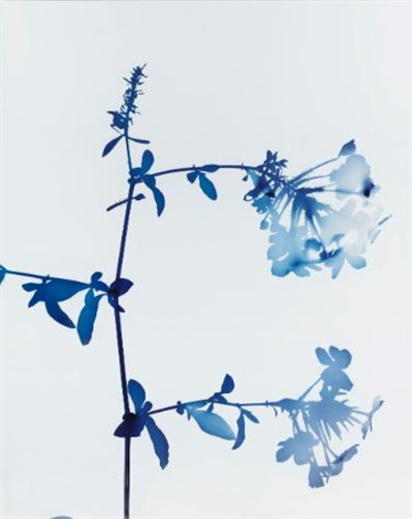 no. 017 by james welling