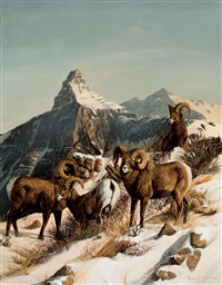 rocky mountain big horn by gary r. swanson