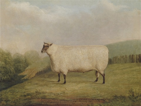 a prize ram bred by mr william sainsbury by james of bath loder
