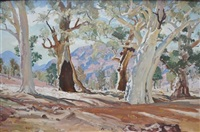 moralana creek flinders ranges by maxwell richard christopher ragless