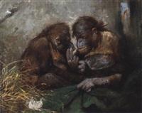 orang-utang paar by imre karoly simay