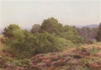 albury heath, surrey by george marks