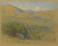 alpine california; oaks at sunset by leonard lester