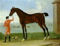 a bay racehorse held by a jockey wearing pink colours on newmarket heath, the same horse winning a race in the distance by richard roper