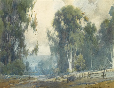 eucalyptus in the california hills by percy gray
