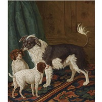 a longhaired black-and-white dog with bushy tail and two brown spotted white puppies in an interior by tethart philip christian haag