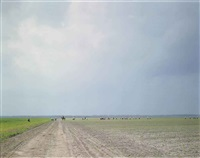 the farm, angola state prison, angola, la by alec soth