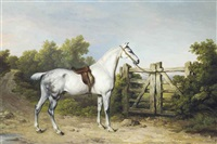 sir charles mordaunt's grey hunter piccolo tethered to a gate by philipp reinagle