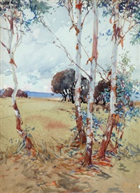 saplings by harold brocklebank herbert