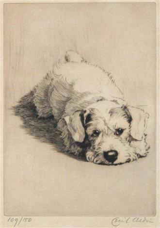 A Sealyham Terrier Puppy By Cecil Charles Windsor Aldin