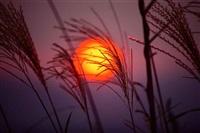 basho sunset, japan by michael s. yamashita