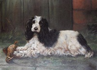cocker spaniel with woodcock by adrienne lester