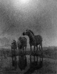 zebras grazing in the moonlight by arthur radclyffe dugmore