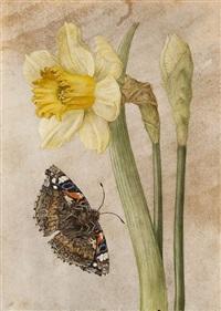 narciso giallo e una farfalla by jacques antoine marie lemoine