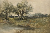 a wooded riverbank by leopold rivers
