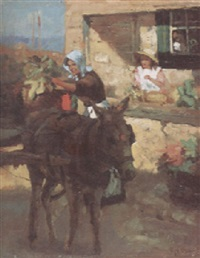 unloading the donkey by violet mcneish kay
