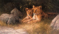 two lion cubs by dick van heerde