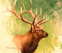 elk head by tucker smith
