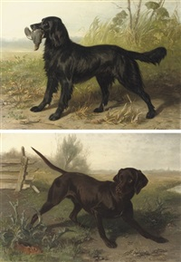 a black setter with it's prey (+ a black labrador; pair) by conradyn cunaeus