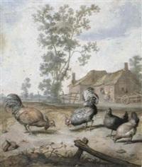 cockerels and chickens in a farmyard by margarethe de heer