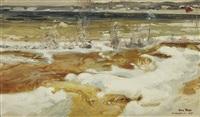 merikoski rapids by alexander rapp
