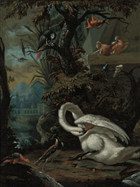 swans, doves, macaws, an african grey parrot and other birds in a landscape by dirck wyntrack