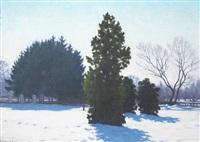 a winter landscape in a park by samu börtsök