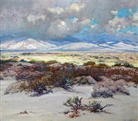blooming desert with billowing clouds by john frost