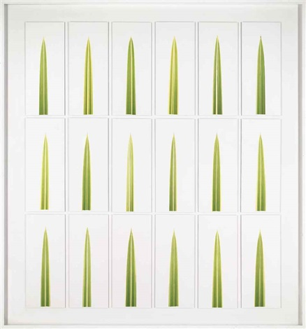 broken reeds autumn 18 works by garry fabian miller