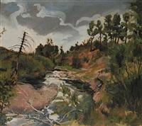 bragg creek storm by frank vervoort