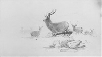 deer, a hunter and his dog, woodland and other scenes by john leslie