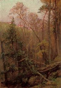 spring evening by benjamin haughton