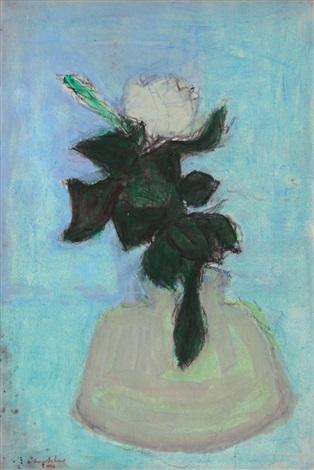 magnolia by avni arbas