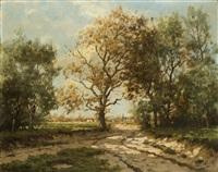 strada di campagna by tinus de jongh
