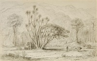 banks of the hutt (near the bridge) as in 1843 by william swainson