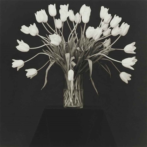vase with white tulips by robert mapplethorpe