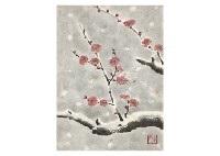 snow red plum by akira akizuki