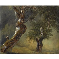 studie av trær-study of trees by thomas fearnley