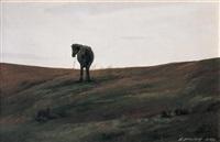 horse in the wild by li zhongliang