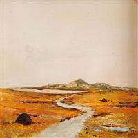 bogland, co. donegal by david gordon hughes
