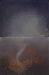 untitled (cause & effect series, cep 42) (diptych) by joe goode