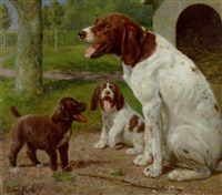 sleepy dogs by caspar von reth